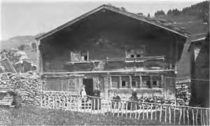 wildhaus