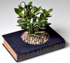 bookplanter-300x271