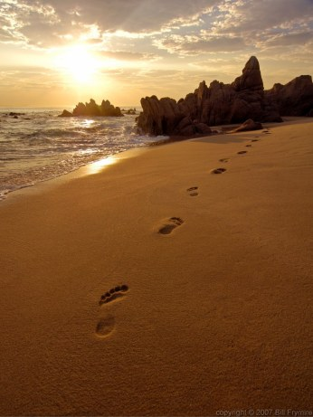 Footprints in the sand on beach near San José del Cabo, Mexico at sunrise