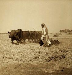 Ramla, Palestine, 1938.